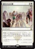 【JPN/AKH/FOIL★】選定された行進/Anointed Procession 『R』[白]
