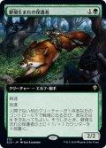 【JPN/ELD-BF】僻境生まれの保護者/Wildborn Preserver 『R』 [緑]