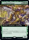 【JPN/THB/BF】ニクス咲きの古きもの/Nyxbloom Ancient 『M』 [緑]