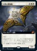 【JPN/IKO-BF】光明の繁殖蛾/Luminous Broodmoth 『M』 [白]