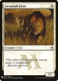 【ENG/MB1】サバンナ・ライオン/Savannah Lions
