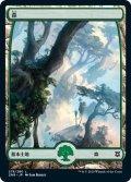 【JPN/ZNR】森/Forest  (278)
