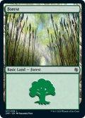 【ENG/JMP】森/Forest (077)
