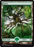 【ENG/BFZ/FOIL★】森/Forest ( 273)