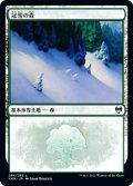 【JPN/KHM】冠雪の森/Snow-Covered Forest ( 284)