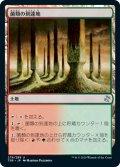 【JPN/TSR】菌類の到達地/Fungal Reaches『U』 [土地]