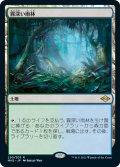 【JPN/MH2】霧深い雨林/Misty Rainforest