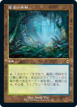 画像1: 【JPN/MH2-BF】霧深い雨林/Misty Rainforest
