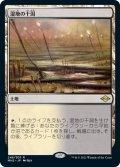 【JPN/MH2】湿地の干潟/Marsh Flats