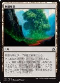 【JPN/A25】無限地帯/Myriad Landscape