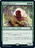 【JPN/AFR】夢の円環のドルイド/Circle of Dreams Druid 『R』 [緑]