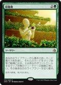 【JPN/AKH】収穫期/Harvest Season 『R』[緑]