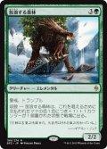 【JPN/BFZ】放浪する森林/Woodland Wanderer 『R』