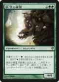 【JPN/CNS】狼茨の精霊/Wolfbriar Elemental