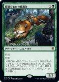【JPN/ELD/FOIL★】僻境生まれの保護者/Wildborn Preserver 『R』 [緑]