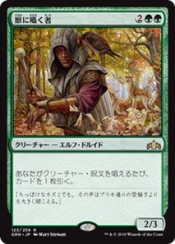 画像1: 【JPN/GRN】獣に囁く者/Beast Whisperer 『R』 [緑]