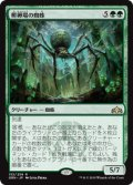 【JPN/GRN】孵卵場の蜘蛛/Hatchery Spider 『R』 [緑]