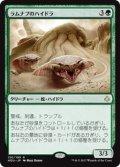 【JPN/HOU】ラムナプのハイドラ/Ramunap Hydra 『R』 [緑]