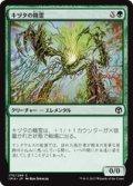 【JPN/IMA】キヅタの精霊/Ivy Elemental 『C』 [緑]