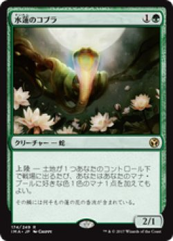 画像1: 【JPN/IMA】水蓮のコブラ/Lotus Cobra 『R』 [緑]