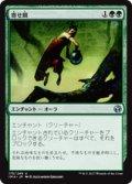 【JPN/IMA】寄せ餌/Lure 『U』 [緑]
