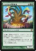 【JPN/JOU】ハイドラの繁殖主/Hydra Broodmaster