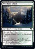 【ENG/KHM】森林の地割れ/Woodland Chasm 『C』 [土地]
