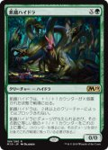 【JPN/M19】飢餓ハイドラ/Hungering Hydra 『R』 [緑]