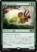 【JPN/M20/FOIL★】変容するケラトプス/Shifting Ceratops 『R』 [緑]