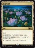 【JPN/M20/FOIL★】睡蓮の原野/Lotus Field  [プレリリース]