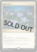【JPN/M20】睡蓮の原野/Lotus Field 『R』 [土地]