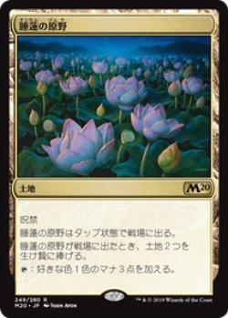 画像1: 【JPN/M20】睡蓮の原野/Lotus Field 『R』 [土地]