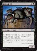【JPN/MH1】墓所のネズミ/Crypt Rats 『U』 [黒]