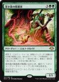 【JPN/MH1】深き森の隠遁者/Deep Forest Hermit 『R』 [緑]