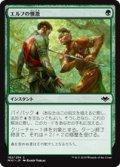 【JPN/MH1】エルフの憤激/Elvish Fury 『C』 [緑]