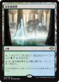 【JPN/MH1】冠水樹林帯/Waterlogged Grove 『R』 [土地]
