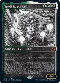 【JPN/MID-BF】光の勇者、シガルダ/Sigarda, Champion of Light 『M』 [マルチ]