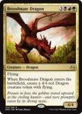 【ENG/MM3】若き群れのドラゴン/Broodmate Dragon 『R』