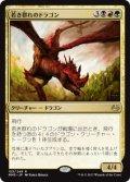 【JPN/MM3】若き群れのドラゴン/Broodmate Dragon 『R』