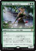【JPN/ORI】光り葉の将帥、ドゥイネン/Dwynen, Gilt-Leaf Daen 『R』