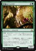 【JPN/RIX】若葉のドライアド/Tendershoot Dryad 『R』 [緑]