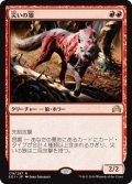 【JPN/SOI】災いの狼/Scourge Wolf 『R』