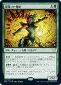 【JPN/STX】龍護りの精鋭/Dragonsguard Elite 『R』 [緑]
