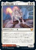 【JPN/STX/Foil★】狡猾な相棒、ミラ/Mila, Crafty Companion 『R』 [白]