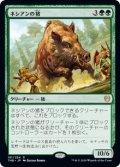 【JPN/THB】ネシアンの猪/Nessian Boar 『R』 [緑]