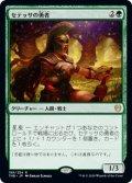 【JPN/THB】セテッサの勇者/Setessan Champion 『R』 [緑]