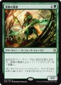 【JPN/XLN】深根の勇者/Deeproot Champion 『R』 [緑]