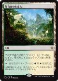 【JPN/XLN/FOIL★】陽花弁の木立ち/Sunpetal Grove 『R』 [土地]