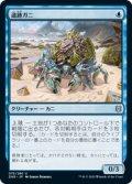 【JPN/ZNR】遺跡ガニ/Ruin Crab 『U』 [青]
